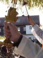 http://leonhardiritt-preisendorf.de/files/gimgs/th-21_PB040125.jpg