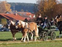 http://leonhardiritt-preisendorf.de/files/gimgs/th-26_PB095076.jpg