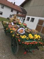 http://leonhardiritt-preisendorf.de/files/gimgs/th-34_PHOTO-2018-11-04-16-33-17-5.jpg
