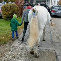 http://leonhardiritt-preisendorf.de/files/gimgs/th-34_PHOTO-2018-11-05-09-14-38.jpg